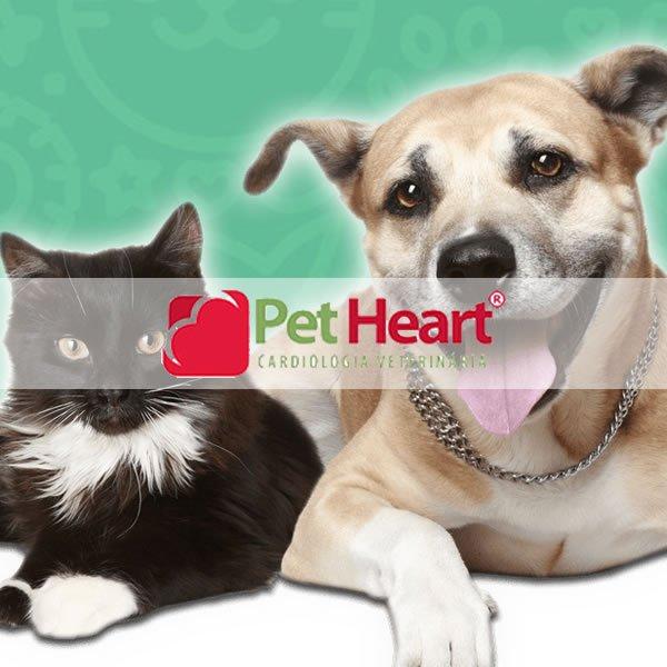Pet Heart Cardiologia Veterinária - agência digital campinas
